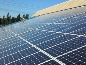 Largest 100% Made-in-Washington Solar Array Installed in King County